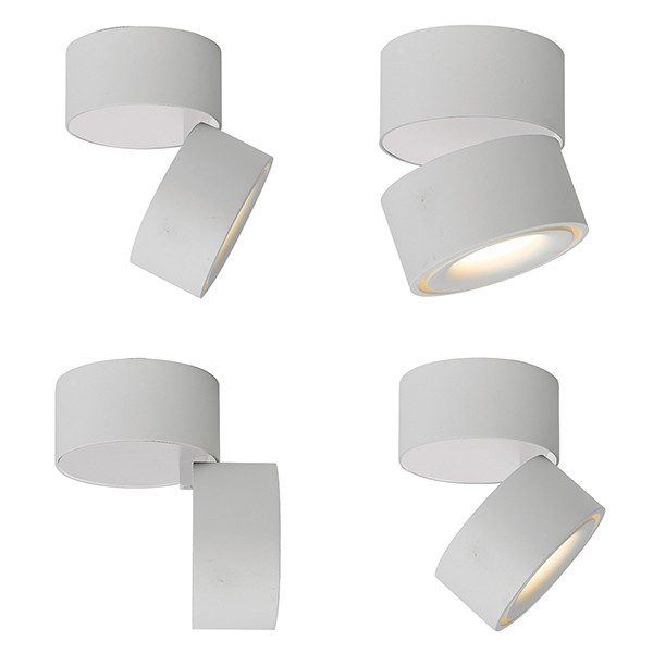 surface mounted downlight white movable surface mounted. Black Bedroom Furniture Sets. Home Design Ideas