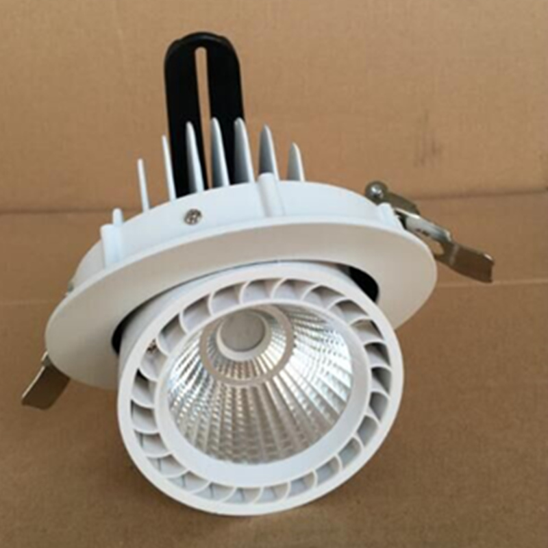 Gimbal LED downlight