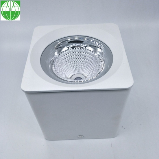 Square Surface Mounted Downlight