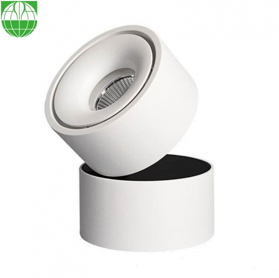 Movable Surface Mounted LED Ceiling Light