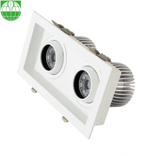 2 Heads 30W LED Downlight